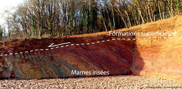 Photographie de l'affleurement de Voegtlinshoffen avec fauchage des couches argileuses dans le sens de la pente