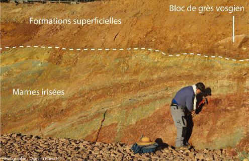 Partie superficielle des marnes fauchée au contact des formations superficielles