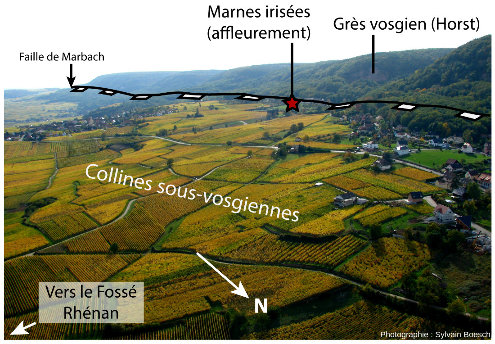 Vue aérienne de la zone de Voegtlinshoffen