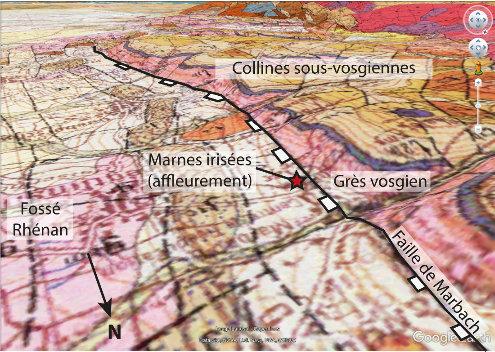 Vue du site sur la carte géologique au 1/50000 de Neuf-Brisach Obersaasheim superposée au relief