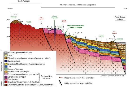 Coupe géologique de la bordure Ouest du Fossé rhénan à hauteur de Voegtlinshoffen