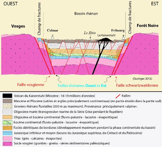 Coupe géologique globale du Fossé rhénan à hauteur de Colmar