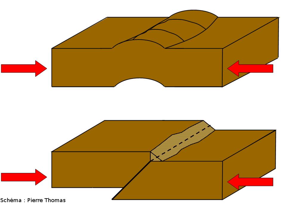 Morphologies schématiques comparées des rides (en haut) et des escarpements (en bas) comme on en trouve sur les planètes