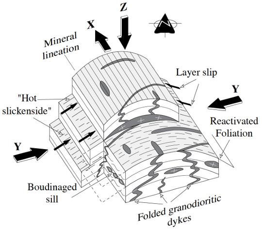 Bloc diagramme interprétatif des structures planaires et linéaires développées lors de la mise en place des granites de Chanteix et Sainte-Fortunade du cœur de l'antiforme de Tulle (voir Figure 19), et de la déformation des filons contemporains