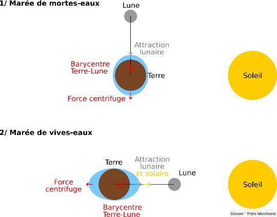 Principaux paramètres astronomiques des marées dans le cas d'une marée statique
