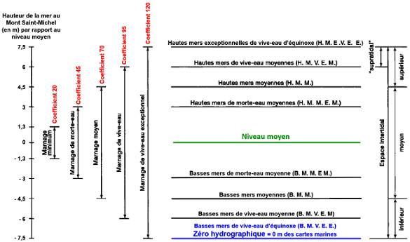 Amplitude des marées en fonction de leur coefficient et critères de référence
