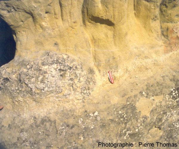 Vue générale de l'affleurement de sphérules micro-stromatolitiques oligocène de Limagne (Jussat)