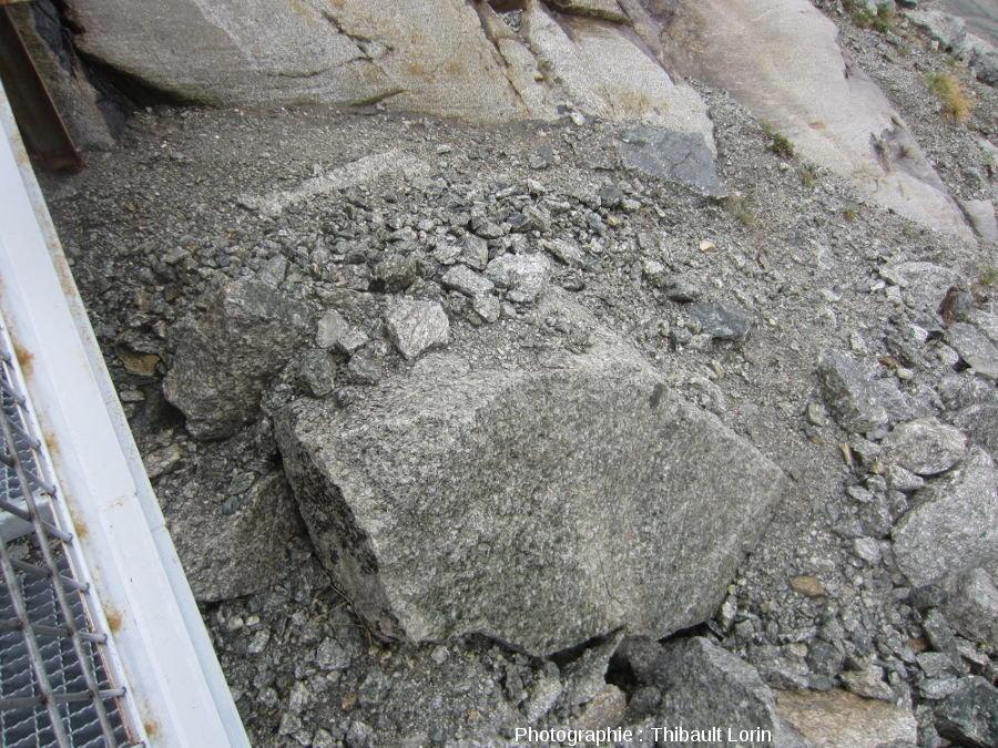 Éléments granitiques de la moraine latérale gauche de la Mer de Glace