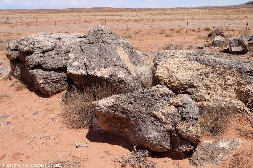 Vue rapprochée de blocs issus du démantèlement d'un diatrème de brèches magmatiques (et potentiellement également d'éjectas en surface), à proximité du village de Mexican Water, Arizona