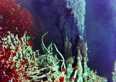 Un mauvais analogue des milieux océaniques ayant pu créer acides aminés et autres molécules organiques