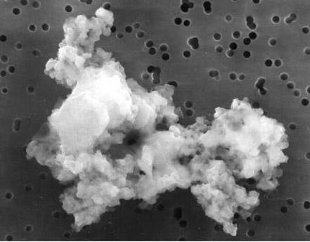 Une micro-météorite (ou grain cométaire), recueillie par un avion stratosphérique de la Nasa (dimension: 10μm)
