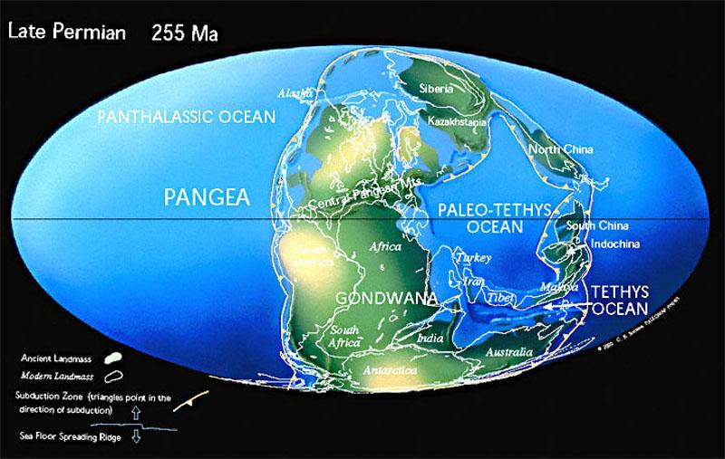 Reconstitution paléogéographique montrant la position de l'Australie au Permien