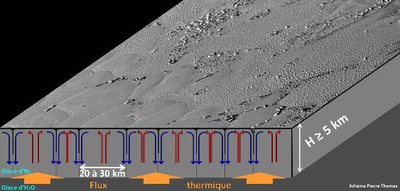 Schéma simplifié de la convection interne à Sputnik Planitia expliquant la morphologie de surface (réseau polygonal, hill clusters…)