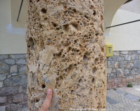 Cargneule sur les piliers de l'église de Roya, Saint-Étienne-de-Tinée