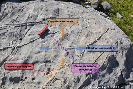 Interprétation tectonique de la dalle calcaire à fentes de tension et joints stylolithiques