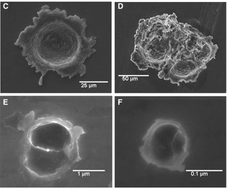 Images (microscopie électronique) de 4 cratères d'impact dans l'aérogel