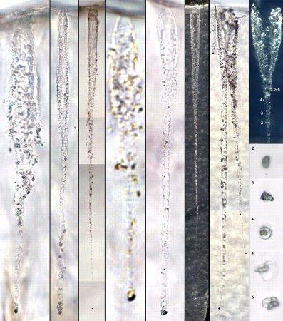 Huit exemples de traces dans l'aérogel, avec grains de poussières à leur extrémité ou laissés le long de la trace