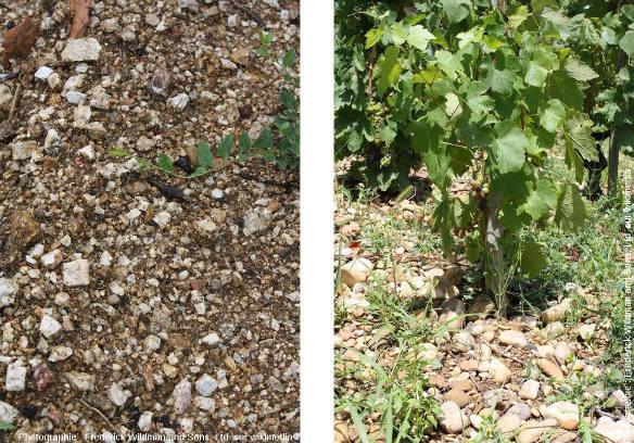 Les deux type de substratum du vignoble de Tain l'Hermitage