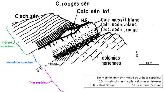 Coupe schématique visualisant ce qu'on voit le long du sentier géologique de Saint Crépin