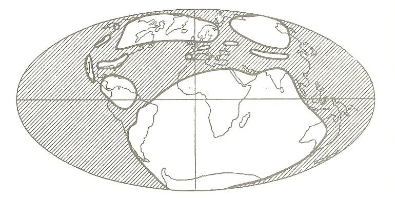 Répartition de l'eau (parties hachurées) et des continents au Carbonifère, selon les représentations habituelles