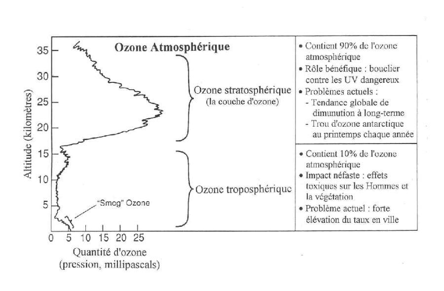 Répartition de l'ozone dans l'atmosphère terrestre.