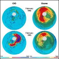 Corrélation entre l'abondance relative d'ozone et de dérivés chlorés (ClO) au dessus de la région polaire Arctique.