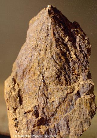 Cône de percussion (h=10cm) dans un lamprophyre filonien, à environ 2km WNW du centre de l'astroblème