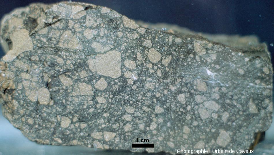 Échantillon de brèche de dislocation monolithologique développée aux dépens d'une amphibolite, carrière de Champagnac
