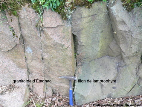 Filon de lamprophyre recoupant le granitoïde d'Étagnac, dans le talus Sud de la voie ferrée, à 1,2km à l'Est de Chabanais (Charente)