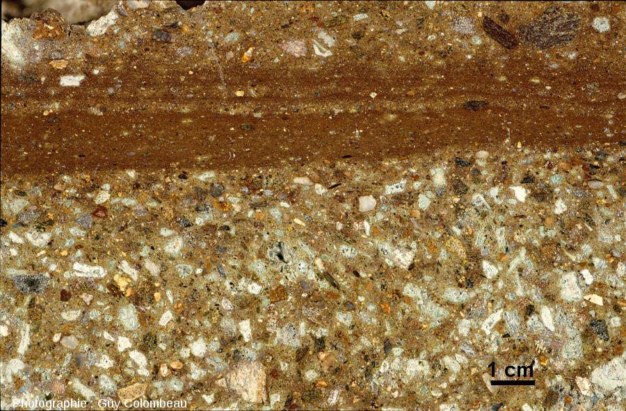 Vue macroscopique d'une impactoclastite litée de l'ancienne carrière des arènes de Chassenon