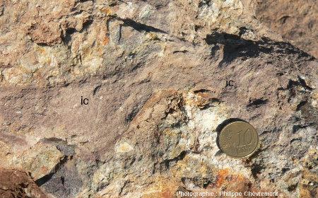Morceau d'impactoclastite (ic) dans la suévite de Chassenon