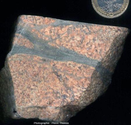 Veine de pseudotachylite dans une aplite