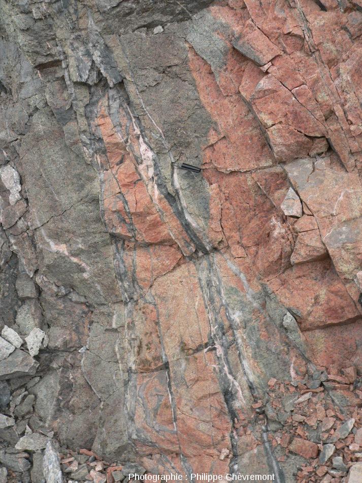 Aplite rose à grise avec un réseau de veines de pseudotachylite très sombre recoupées par des veines de quartz blanc