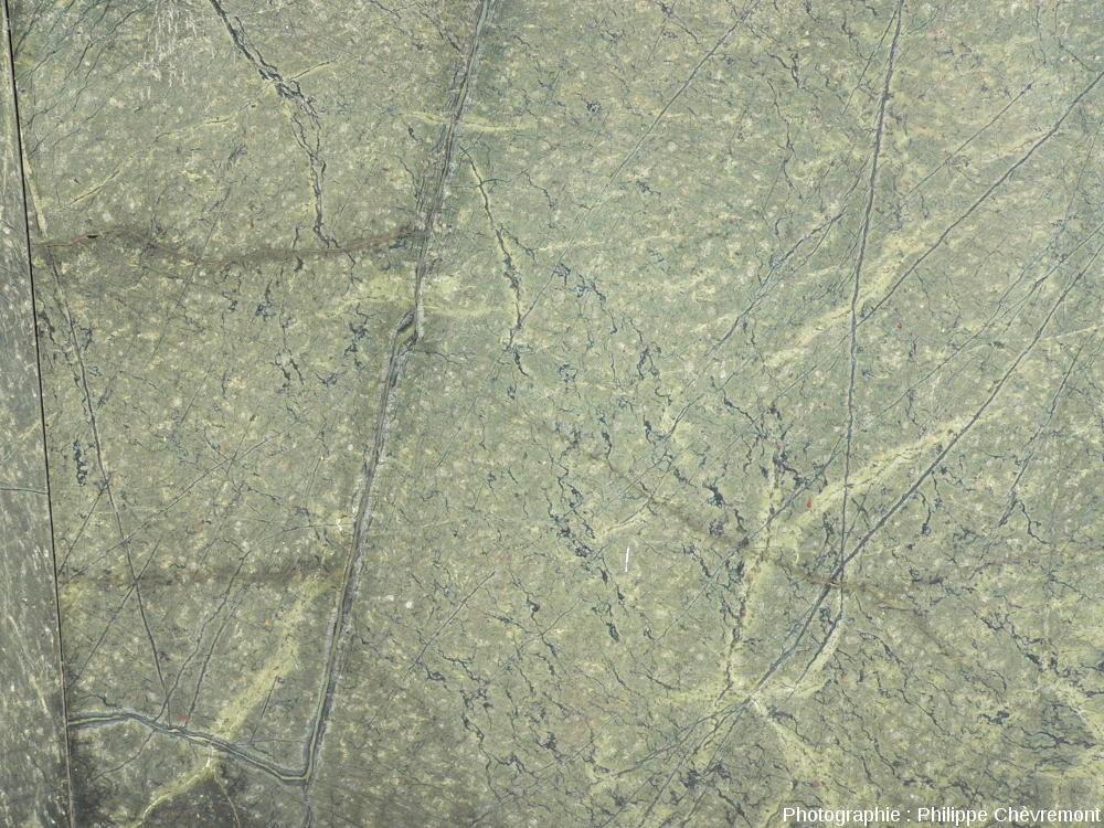 Plaque polie de serpentinite de Merlis