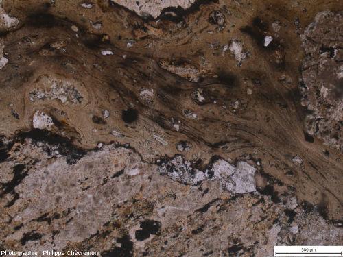 Verre à texture fluidale se moulant sur un fragment de gneiss choqué (en bas) à biotite ferruginisée - LPNA