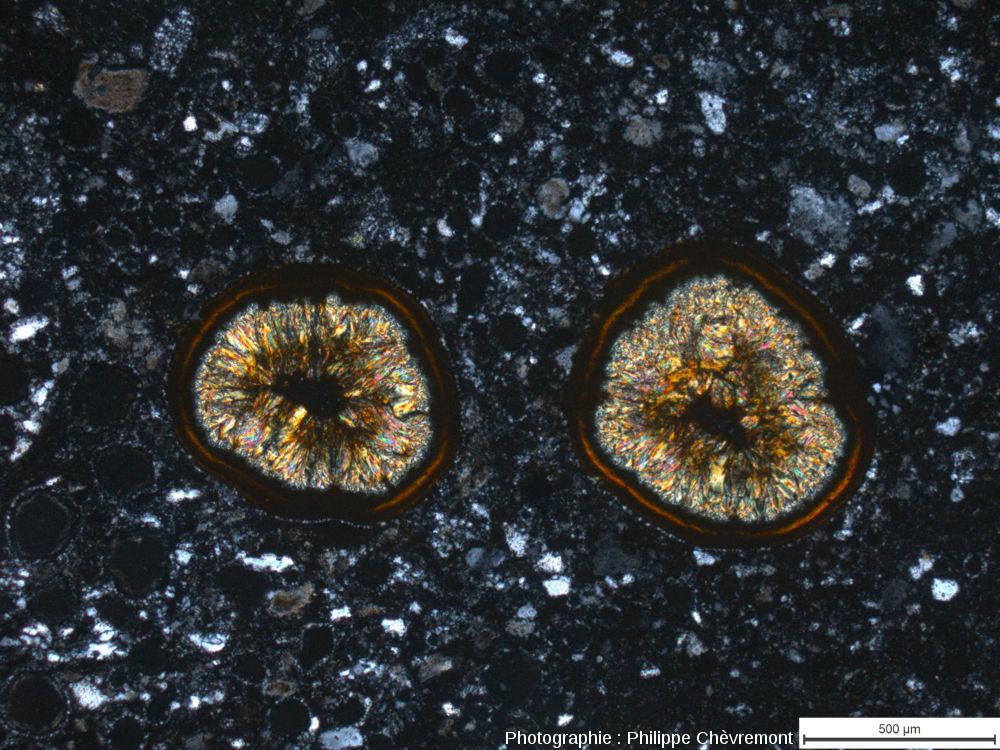 Impactite de type Babaudus riche en vacuoles remplies de minéraux - LPA