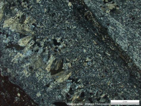 Veines de pseudotachylite (Ps) aux épontes d'une aplito-pegmatite (aP), dans la carrière de Champagnac - LPA