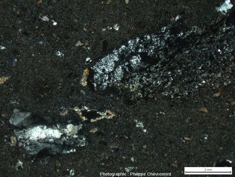 """Impactite de type Babaudus à petits éléments de gneiss et de granite choqués, dans une matrice constituée d'un """"verre"""" diaplectique quasiment amorphe - LPA"""