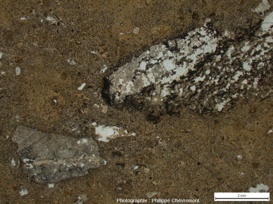 """Impactite de type Babaudus à petits éléments de gneiss et de granite choqués, dans une matrice constituée d'un """"verre"""" diaplectique quasiment amorphe - LPNA"""