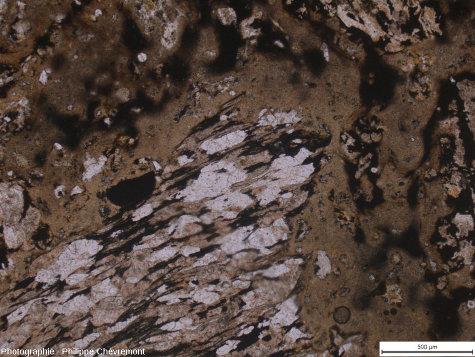 """Verre fluidal de teinte brunâtre se moulant sur un fragment de paragneiss micacé, légèrement choqué, dans une """"brèche""""» de fusion de type Babaudus, à l'Ouest de Fonceverane - LPNA"""