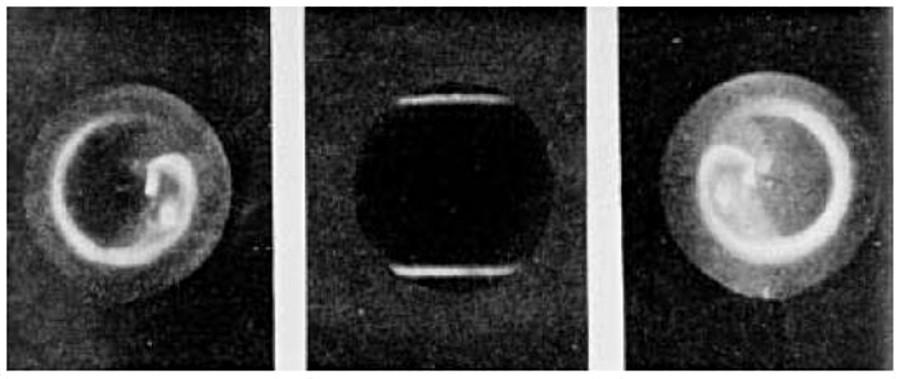 Observation simultanée des ovales Nord et Sud dans la Terrella de Birkeland