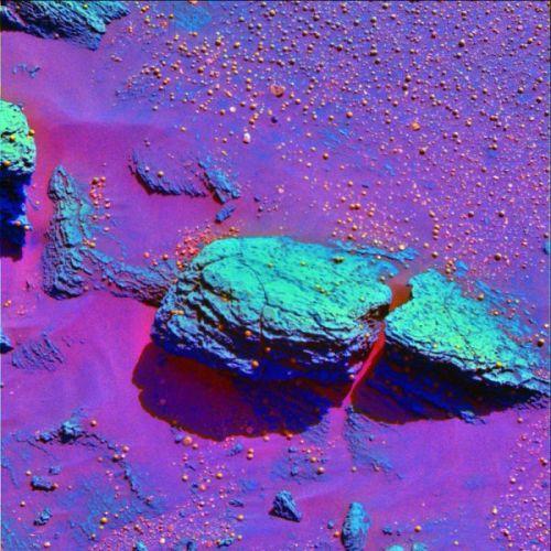 Image en fausses couleurs de Stone Mountain et des berries