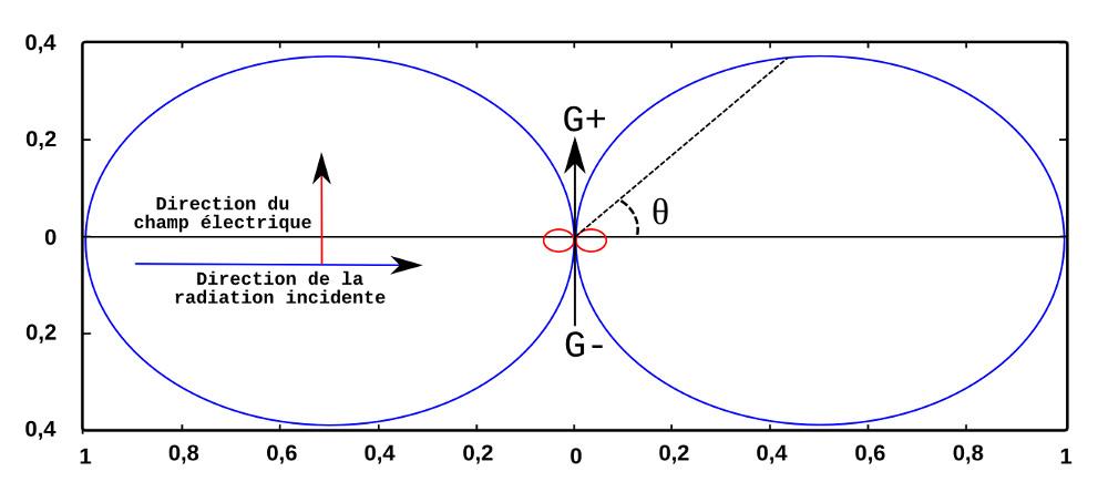 Répartition angulaire de la puissance rayonnée par un dipôle