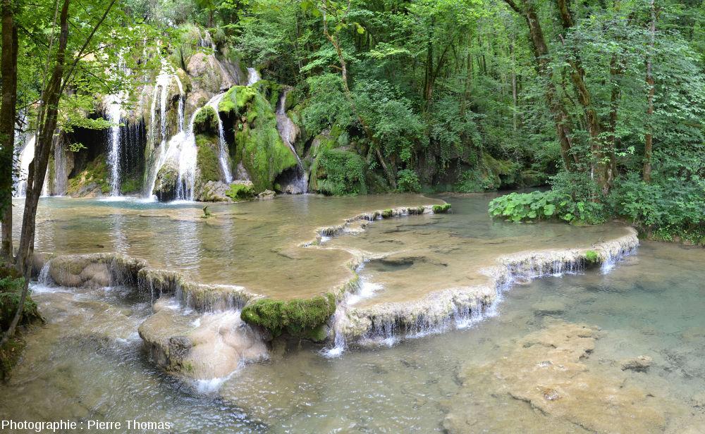 Paysage du Jura illustrant le fait que la biosphère est un agent géologique majeur