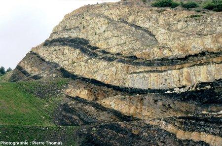 Couches de charbon dans le Carbonifère des Cévennes (bassin de Graissesac, Hérault)