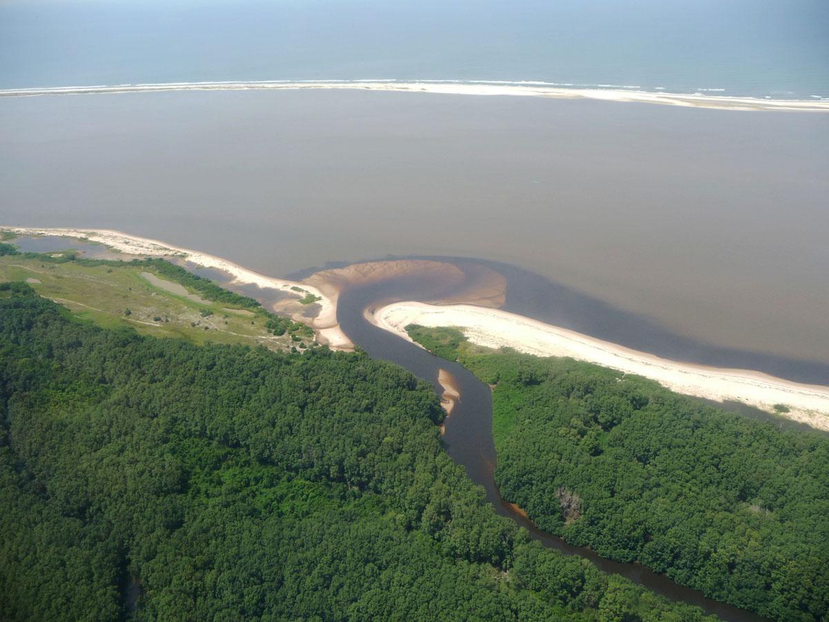 Exemple de sédimentation actuelle où pourraient précipiter des minerais de fer marins, côte gabonaise au Sud de Port Gentil