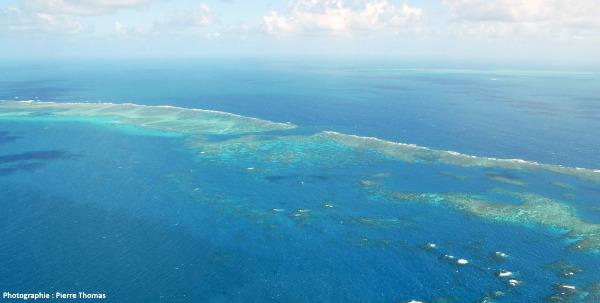Vue d'hélicoptère de la grande barrière de corail au large de Cairn (Australie)