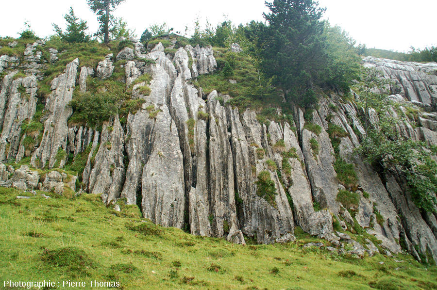 Exemple de karst (La Pierre-Saint-Martin, Pyrénées Atlantiques) où les eaux de ruissellement chargées de CO2 dissolvent la roche