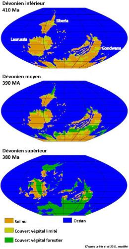 Évolution de la couverture végétale sur les continents au cours du Dévonien (entre -420 et -360Ma)