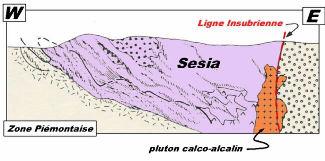 Mise en place du magmatisme calco-alcalin le long de la ligne insubrienne